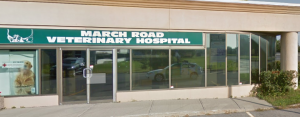 March Road Veterinary Hospital