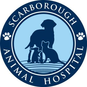 Scarborough Animal Hospital