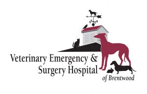 Veterinary Emergency & Surgery Hospital