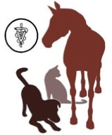 York Veterinary Services