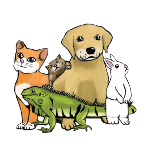 Claws & Paws Veterinary Hospital®