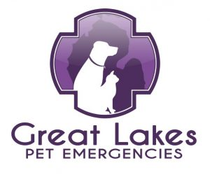 Great Lakes Pet Emergencies
