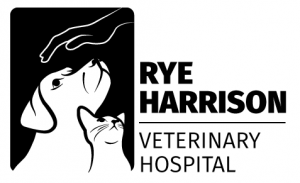Rye Harrison Veterinary Hospital